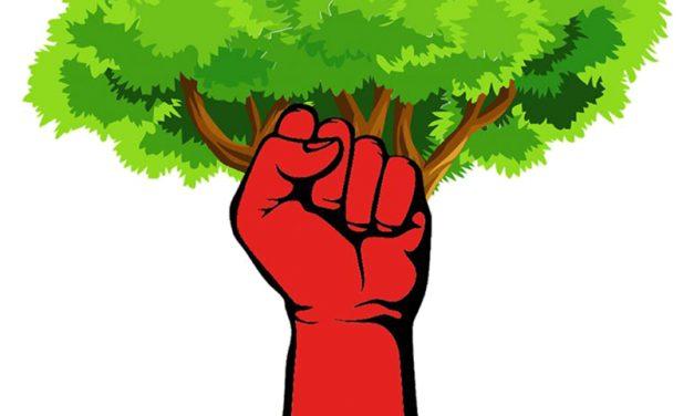 Toutes et tous à la MARCHE CLIMAT du dimanche 9 mai !